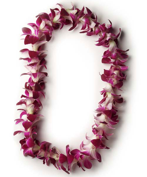Fresh flower leis mightylinksfo